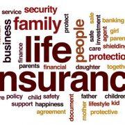 insurance words
