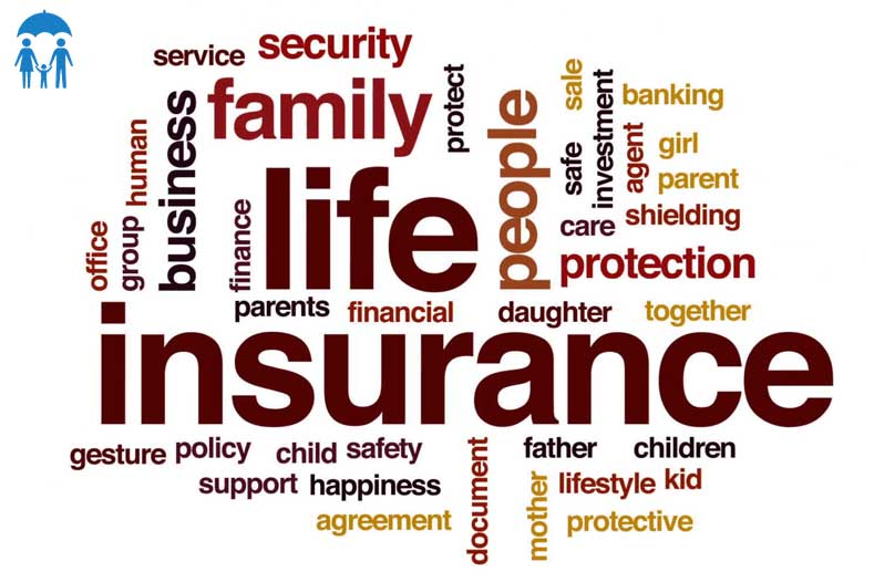 insurance words