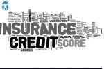 L – Glossary of Insurance Terms